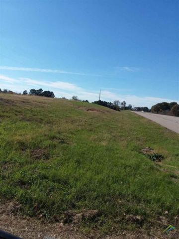 0000 Adjacent To 4599 Hwy 64, Ben Wheeler, TX 75754 (MLS #10089141) :: The Rose City Team