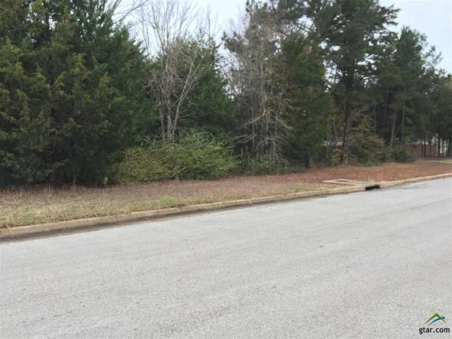 18206 Spruce Hill Drive, Flint, TX 75762 (MLS #10089237) :: RE/MAX Impact