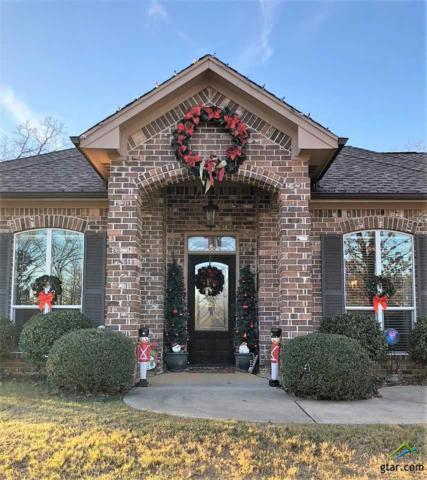 19921 Post Oak Bend, Lindale, TX 75771 (MLS #10089287) :: RE/MAX Impact