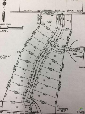 TBD Armadillo Road - Lot 18 - Meadow Springs Subdivision, Gilmer, TX 75644 (MLS #10089460) :: RE/MAX Impact