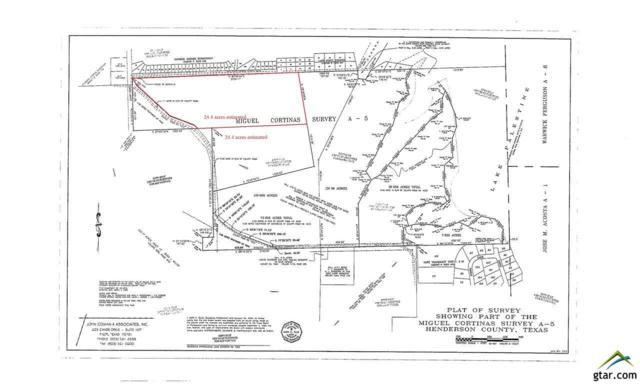 24.4 acres Cr 4202, Chandler, TX 75758 (MLS #10089498) :: RE/MAX Impact