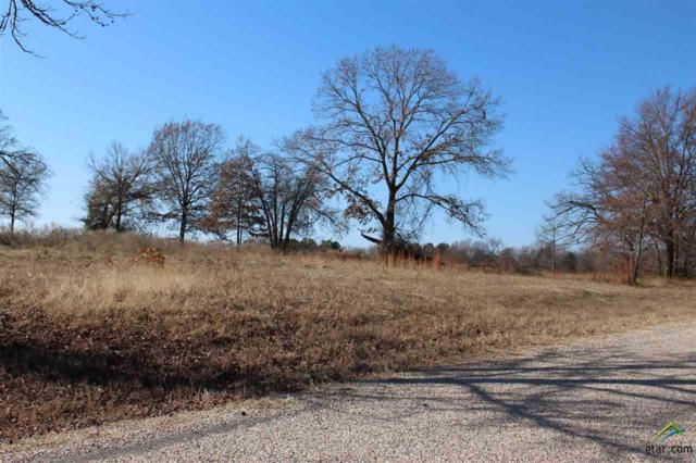 Lot 35 County Road 4261, Emory, TX 75440 (MLS #10089566) :: RE/MAX Professionals - The Burks Team