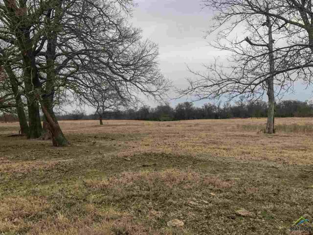 tbd County Road 2336, Como, TX 75431 (MLS #10089762) :: The Wampler Wolf Team