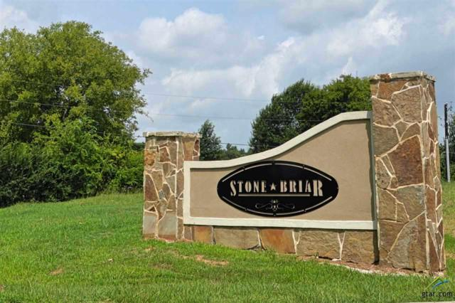 1007 Stone Hill, Mt Pleasant, TX 75455 (MLS #10089980) :: Griffin Real Estate Group