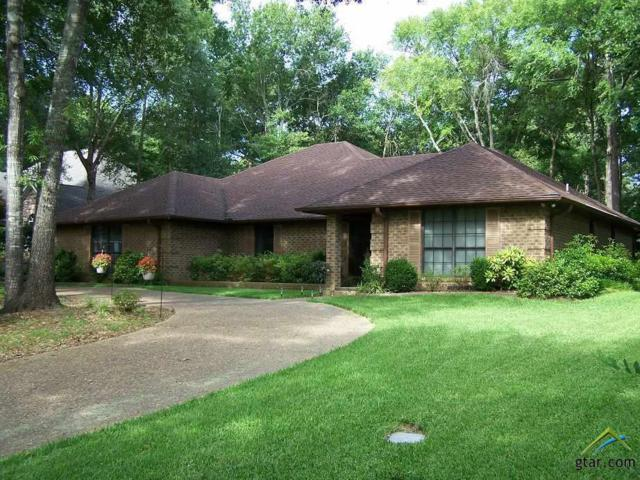1338 Bridle Path Ln, Hideaway, TX 75771 (MLS #10090086) :: RE/MAX Professionals - The Burks Team