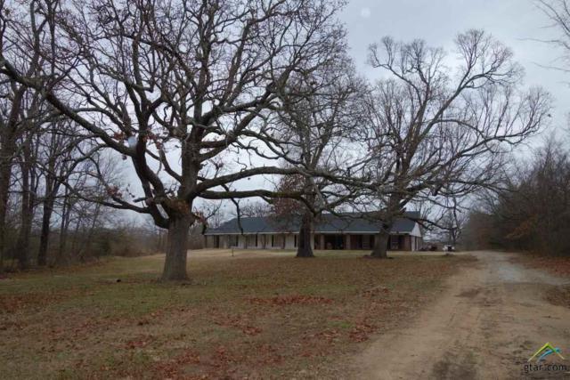 380 Farm Road 2283, Clarksville, TX 75426 (MLS #10090271) :: RE/MAX Professionals - The Burks Team