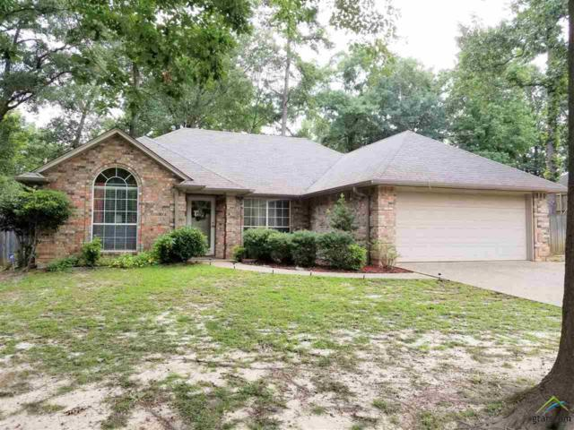 201 Stacy Drive, Whitehouse, TX 75791 (MLS #10090294) :: RE/MAX Impact