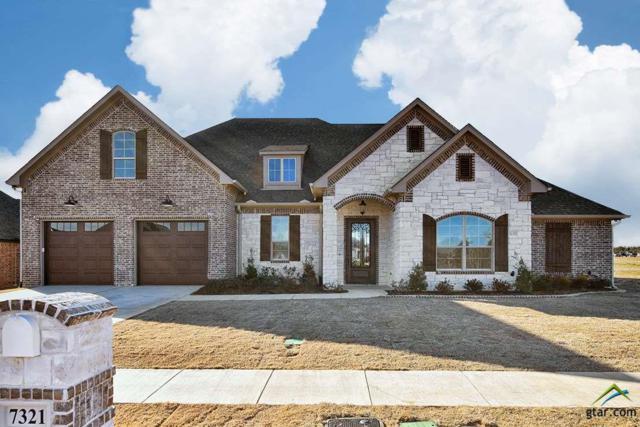 7321 Tule Creek Lane, Tyler, TX 75703 (MLS #10090374) :: RE/MAX Professionals - The Burks Team