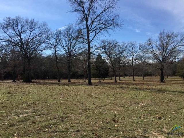 23360 Bridle View Dr, Lindale, TX 75771 (MLS #10090428) :: The Wampler Wolf Team