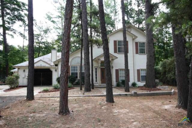 141 Sundance Path, Holly Lake Ranch, TX 75765 (MLS #10090451) :: RE/MAX Impact