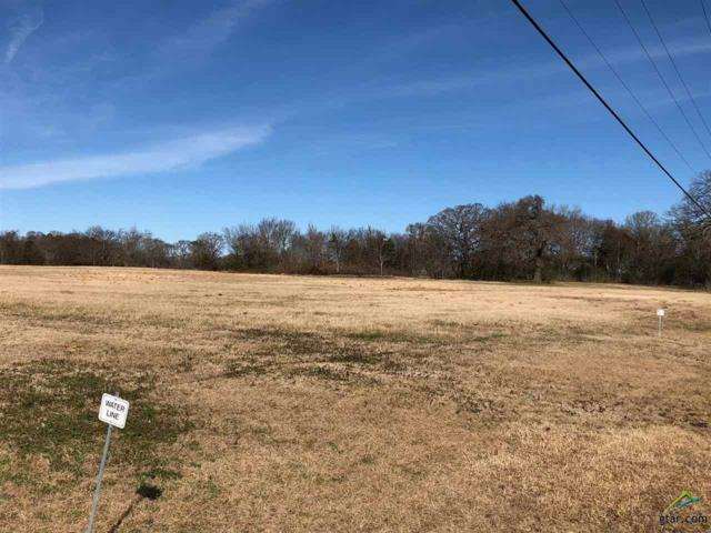 000 Cr 4217, Frankston, TX 75763 (MLS #10090560) :: The Wampler Wolf Team