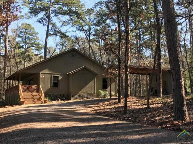 226 Hearthside Path, Holly Lake Ranch, TX 75765 (MLS #10090694) :: RE/MAX Impact