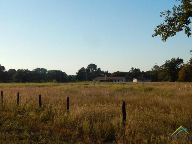 22195 Cr 455, Lindale, TX 75771 (MLS #10090721) :: The Wampler Wolf Team