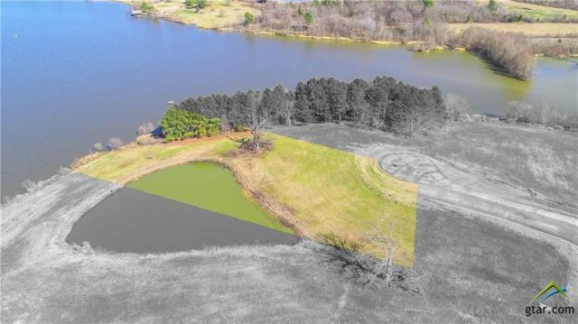 Lot 209 Lago Vista, Athens, TX 75752 (MLS #10090864) :: The Wampler Wolf Team