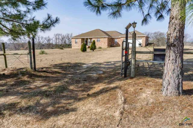 15687 Cr 498 (Legion Hills), Lindale, TX 75771 (MLS #10090878) :: RE/MAX Professionals - The Burks Team