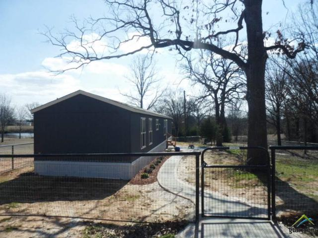 969 County Road 2231, Mineola, TX 75773 (MLS #10090956) :: RE/MAX Impact