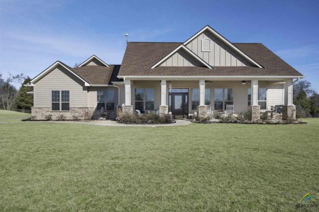 16720 Stallion Shores Ct, Lindale, TX 75771 (MLS #10090983) :: The Wampler Wolf Team