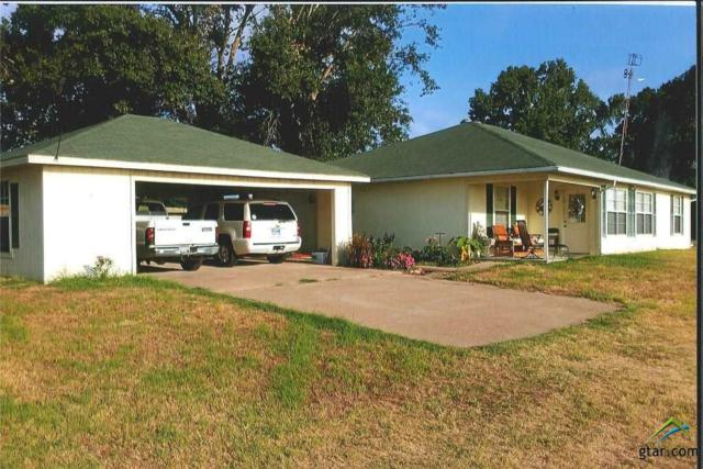 11575 Cr 4348, Larue, TX 75770 (MLS #10091049) :: The Wampler Wolf Team