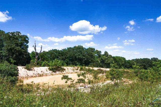2101 Patterson Road, Athens, TX 75751 (MLS #10091105) :: RE/MAX Professionals - The Burks Team