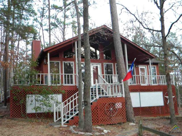210 Butternut Glen, Holly Lake Ranch, TX 75765 (MLS #10091219) :: RE/MAX Impact