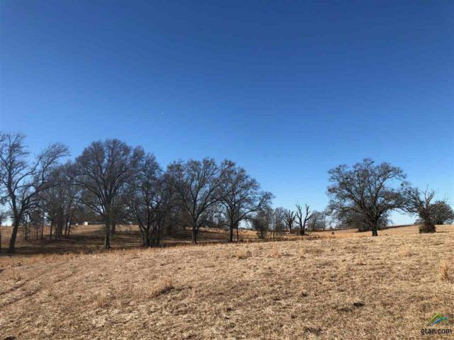 Cr 1070, Winfield, TX 75493 (MLS #10091256) :: The Wampler Wolf Team