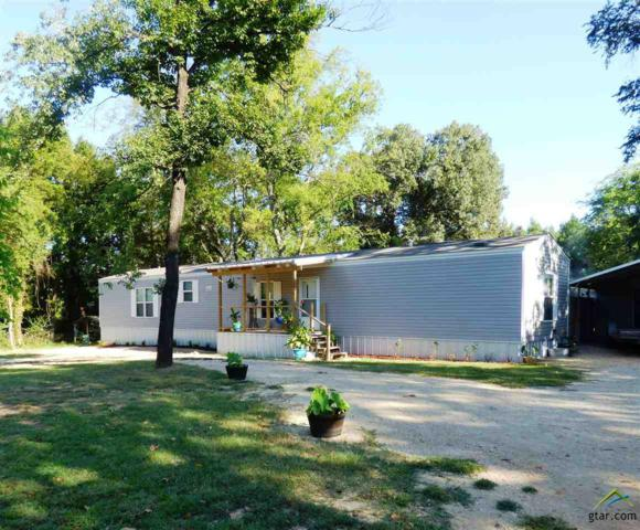 52 County Road 2601, Pittsburg, TX 75686 (MLS #10091278) :: The Wampler Wolf Team