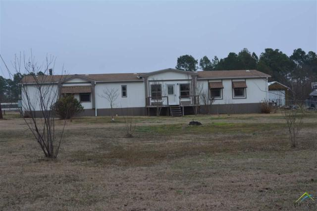 15300 C R 433, Lindale, TX 75771 (MLS #10091317) :: The Wampler Wolf Team