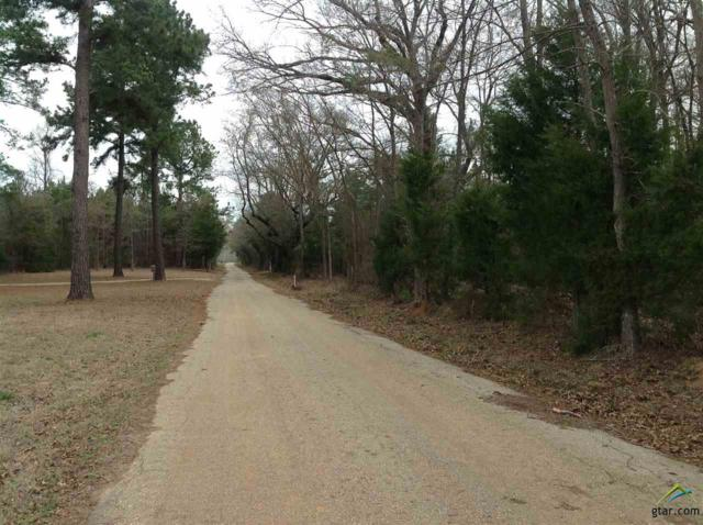 31 acres Cr 4918, Troup, TX 75789 (MLS #10091328) :: The Rose City Team