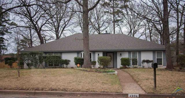 4308 Heather Lane, Tyler, TX 75703 (MLS #10091408) :: RE/MAX Professionals - The Burks Team
