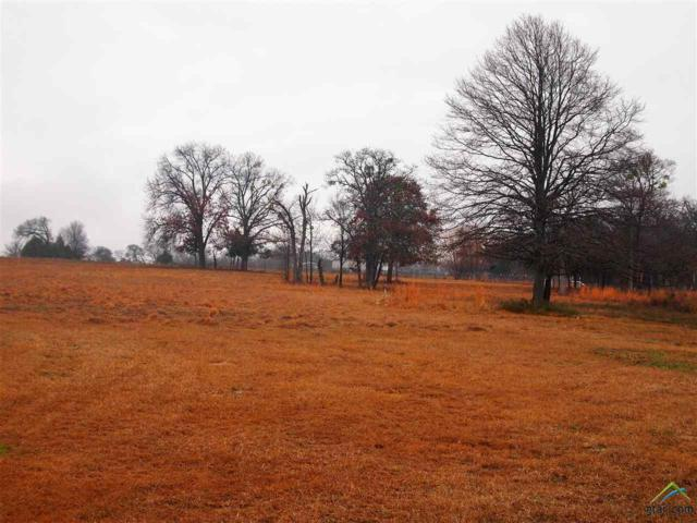 687 Vz County Road 2306, Canton, TX 75103 (MLS #10091442) :: The Wampler Wolf Team