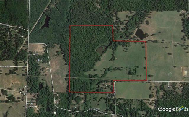1490 Hackberry Rd, Gilmer, TX 75644 (MLS #10091448) :: The Wampler Wolf Team