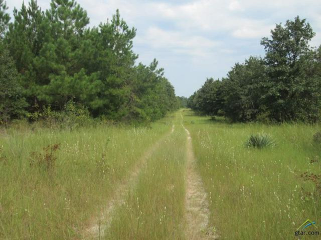 tbd Pr 7907 - Off Fm 1795, Hawkins, TX 75765 (MLS #10091450) :: The Wampler Wolf Team
