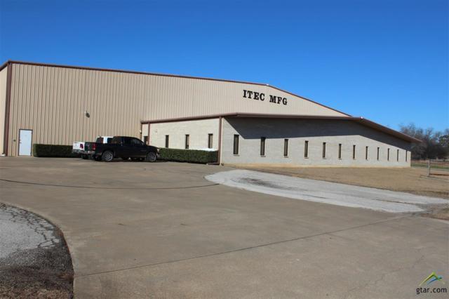 400 All Star Drive, Winnsboro, TX 75494 (MLS #10091922) :: The Wampler Wolf Team