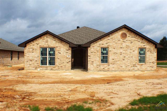 5404 Meadow Ridge, Flint, TX 75762 (MLS #10091936) :: RE/MAX Impact