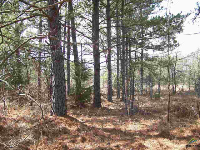 TBD Hwy 154, Winnsboro, TX 75494 (MLS #10092012) :: The Wampler Wolf Team