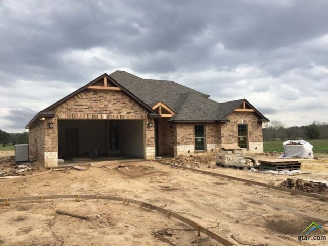 14844 Cr 424 (Lot 6A), Lindale, TX 75771 (MLS #10092038) :: RE/MAX Impact