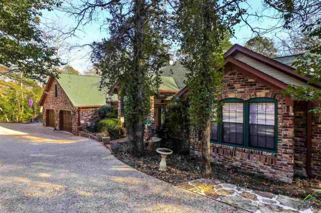 141 Brookside Cove, Holly Lake Ranch, TX 75765 (MLS #10092060) :: The Wampler Wolf Team