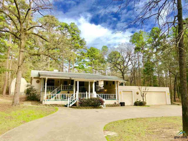 560 Clear Water Trail, Holly Lake Ranch, TX 75765 (MLS #10092076) :: The Wampler Wolf Team