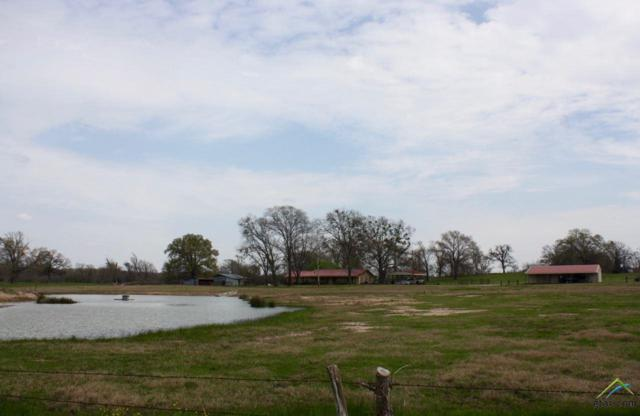 11832 Cr 3520, Brownsboro, TX 75756 (MLS #10092169) :: The Wampler Wolf Team