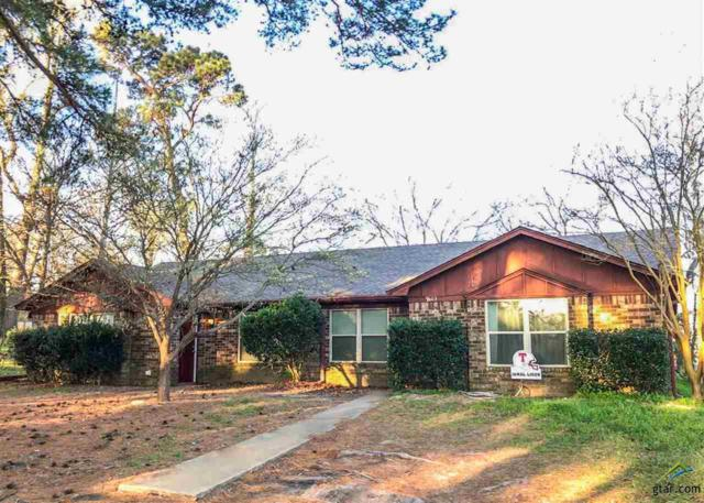7601/7603 Cr 2307, Whitehouse, TX 75791 (MLS #10092210) :: RE/MAX Impact