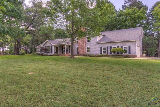 15345 County Road 1145, Tyler, TX 75704 (MLS #10092349) :: RE/MAX Impact