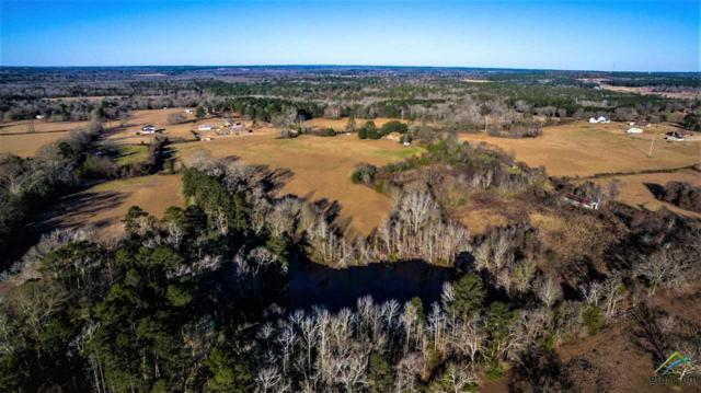 12050 Yarbrough Lane, Troup, TX 75789 (MLS #10092387) :: The Wampler Wolf Team