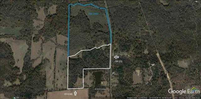 160 acres Fm 275, Emory, TX 75440 (MLS #10092391) :: The Wampler Wolf Team