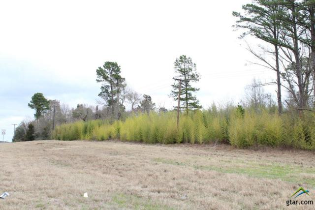 0000 S Us Hwy 79, Palestine, TX 75801 (MLS #10092544) :: RE/MAX Impact