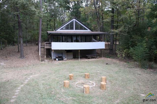 58 Dogwood Trail, Mt Vernon, TX 75457 (MLS #10092646) :: RE/MAX Professionals - The Burks Team