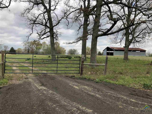 000 County Road 3375, Cookville, TX 75558 (MLS #10092860) :: The Wampler Wolf Team