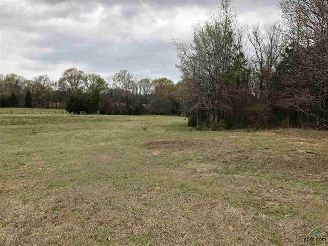 TBD County Road 3335, Cookville, TX 75558 (MLS #10092861) :: The Wampler Wolf Team