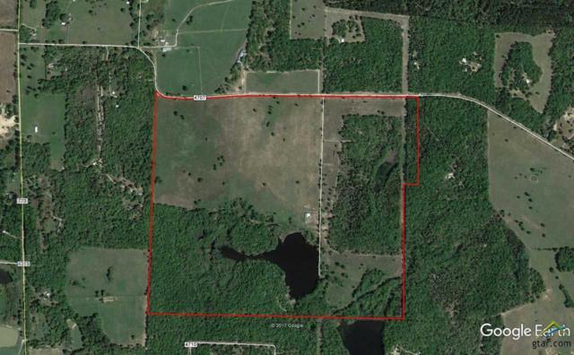 2233 County Road 4707, Ben Wheeler, TX 75754 (MLS #10093049) :: RE/MAX Impact