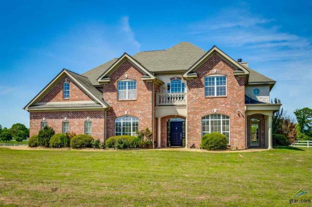 1015 High Meadow Drive, Mt Vernon, TX 75457 (MLS #10093110) :: RE/MAX Professionals - The Burks Team