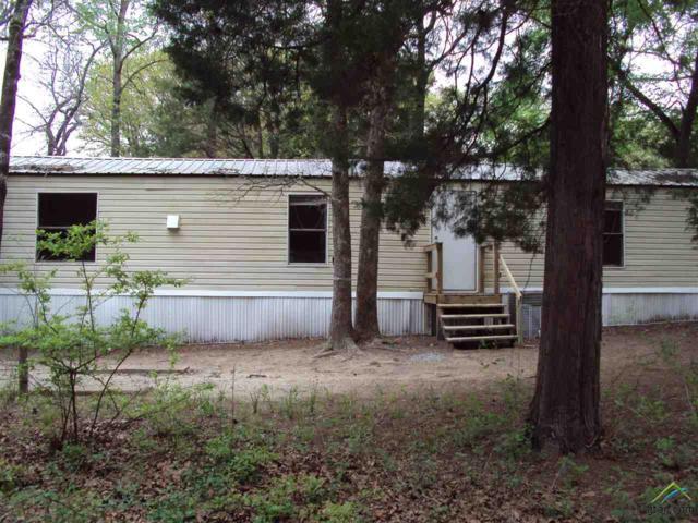 1420 Hickory Hills Drive, Murchison, TX 75778 (MLS #10093250) :: RE/MAX Impact